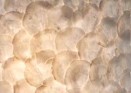 Full shell - Wandlamp 60 cm