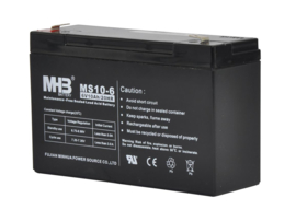 Batterij 6V 10Ah S40
