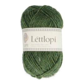 Lettlopi Lyme Grass 1706