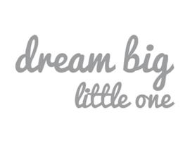 Dreams Sticker big little one Zilver