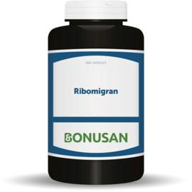 Bonusan Ribomigran