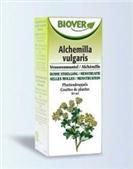 Biover ALCHEMILLA VULGARIS Plantendruppels