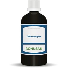 Bonusan Olea europea (6051) 100 ML