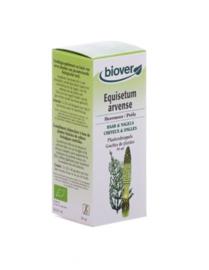 Biover Equisetum arvense