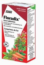 Salus Floradix Ijzer Elixer