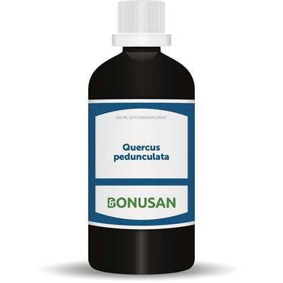 Bonusan QUERCUS PEDUNCULATA 100 ML (6067)