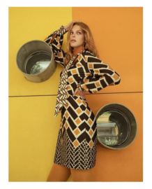 Ana Alcazar, seventies dress