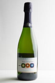 Champagne Cuvée 'Entre Ciel et Terre' Brut AOC  Millesime Biodynamische wijn.