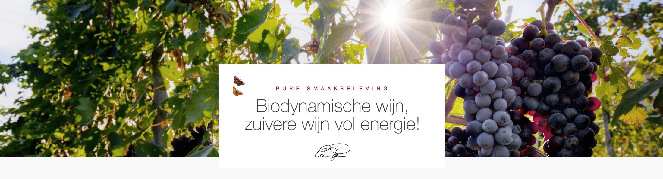Biodynamische Wijn - Homepage