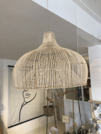 Pitriet lamp