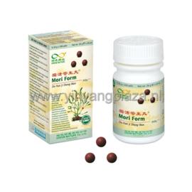 Du Huo Ji Sheng Wan - Mori Pills