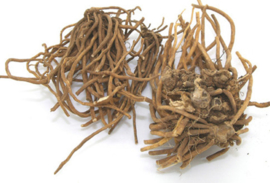 Bai Wei - Radix Cynanchi Atrati - Blackend Swallowwort Root