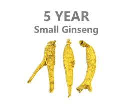 *Sale* Canada Ginseng | 5 jaar | klein |100 Gram