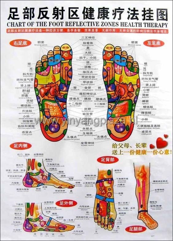 Reflexlogie pooster voet