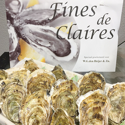 Oesters Fine Claires