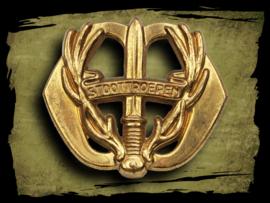 Regiment Stoottroepen Prins Bernhard