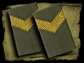 Dutch Army epaulettes