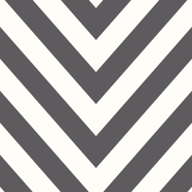 Dutch Make Believe 12574 Chevron zwart wit