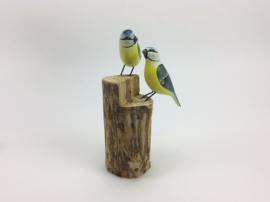 Vogel op standdaard