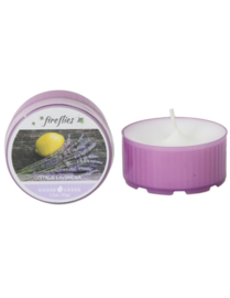 Kaars Fire Flies Citrus Lavender
