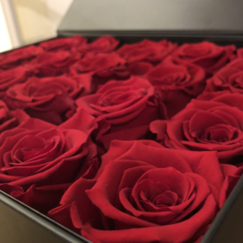 Longlife Flowerbox Large