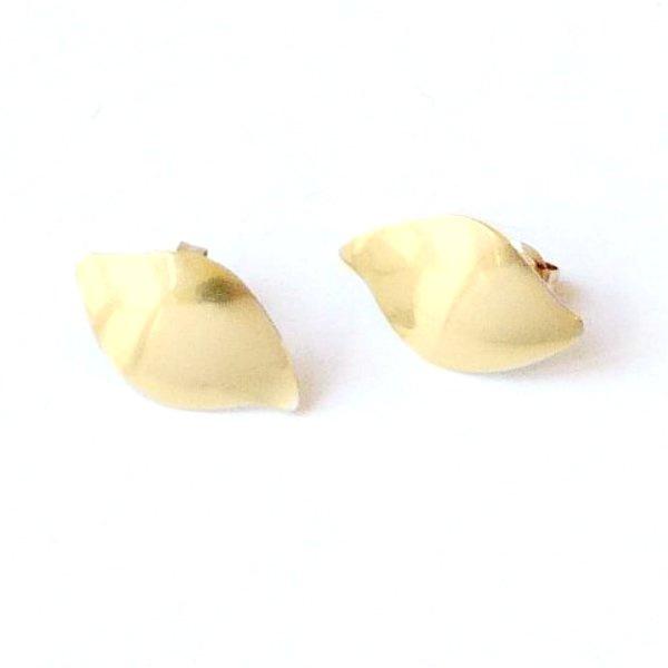 Gouden oorstekers blad