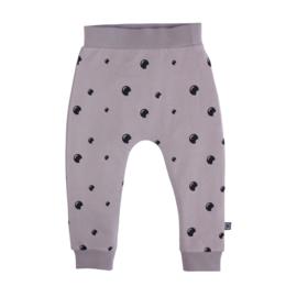 Pants  Purple Dove