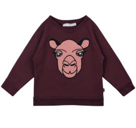Raglan Sweater Ruby