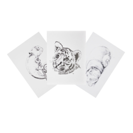 Set of hand-drawn cards