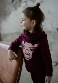Raglan Sweater Ruby