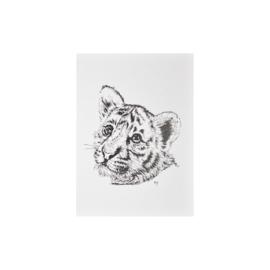 Card - Baby Tiger