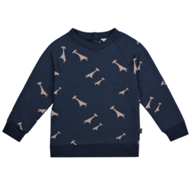 Raglan Sweater Giraf