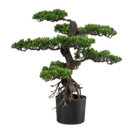 Kunstplanten Bonsai