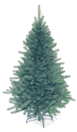 Kerstboom Epire Blue
