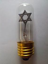 GBO neon Davidster lamp E27 helder