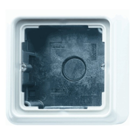 Jung opbouwrand CD581AWW met afdekraam 1-voudig wit