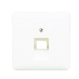 CD500 inzetplaat 1 x outlet RJ45 RAL9010 Alpine wit