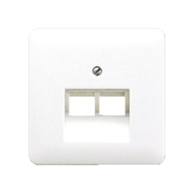 CD500 inzetplaat 2 x outlet RJ45 RAL9010 Alpine wit