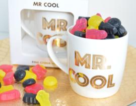 Tas Mr Cool