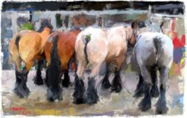 Paardenkonten