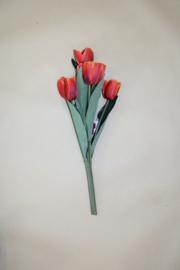 Bosje rode tulpen