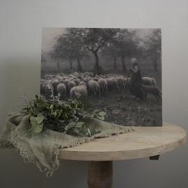 Schilderspaneel Herderin