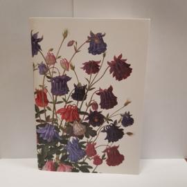 Notitieboekje akelei || 15 x 21 cm