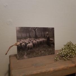 Bordje herderin met schapen || a5 formaat