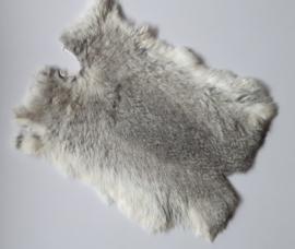 konijnenvacht grijs