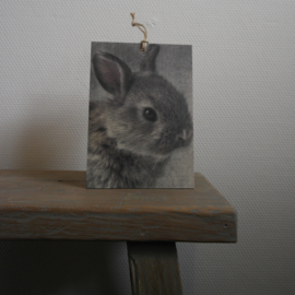 Deco bordje  konijn || met ophanglus