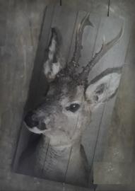 Hertje vooraanzicht deco bord 15 x 30 cm