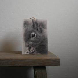 Deco bordje eekhoorn || met ophanglus