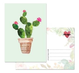 Cactus 1 - kaart