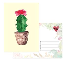 Cactus 2 - kaart